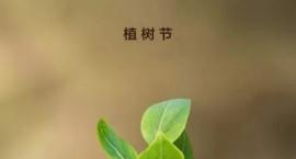 植树节是几月几号?植树节有何教育意义?快给孩子讲讲吧
